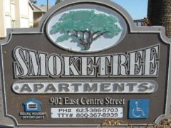 smoketree11283832376